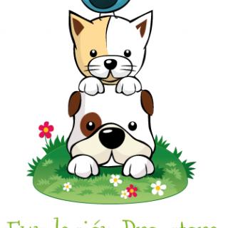 FUNDACIÓN DE ANIMALES DE NAVARRA: Protector